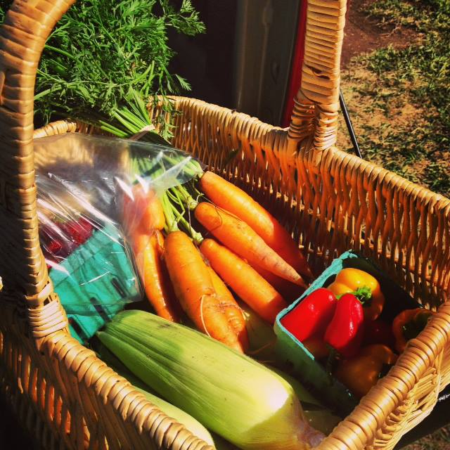 Bounty basket of veggies