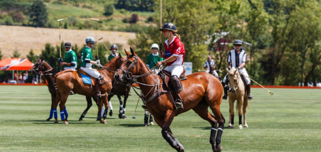 Classic Wines Auction Announces 2nd Annual Oregon Polo Classic